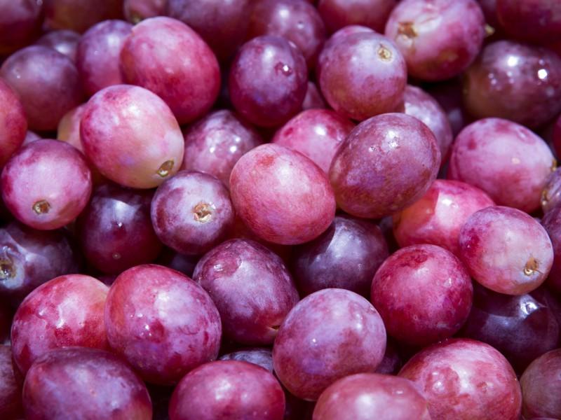 Rode druiven ERP